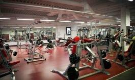 Molo gym