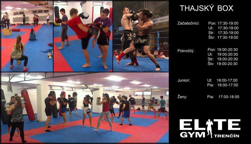 9dbb3d02c1 elite gym - Muay thai Trenčín